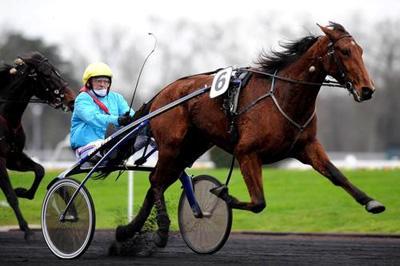 Qualita Bourbon, der vandt mere end 1.5 mio Euro og flere storløb er helsøster til Racer Bourbon