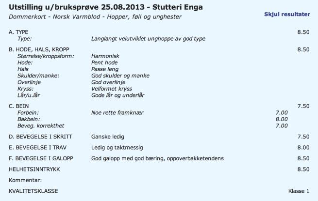 Skjermbilde 2013-12-30 kl. 10.18.01