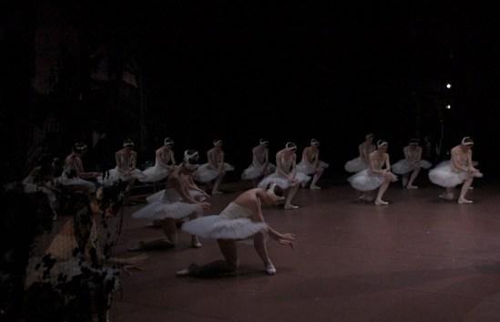 """Japan-Gastspiel, """"Schwanensee"""": Die Schwanenmädchen sagen dankeschön zum Publikum..., Foto: Stuttgarter Ballett"""