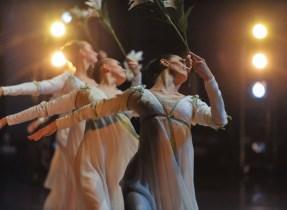 Die Lilienmädchen