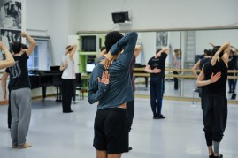 Probe zu Le Spectre de la Rose: Goecke'sche Rückenansichten