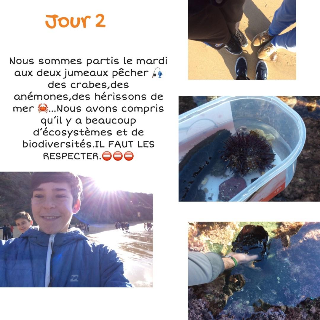 Journal de bord de Julen, Iñaki et Mohamed de 4ème - p3