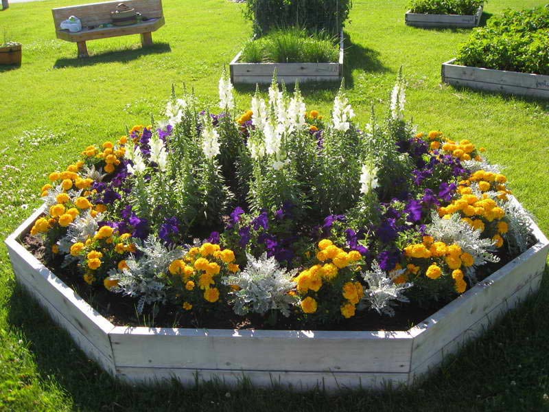 Flower Garden Ideas For Full Sun flower bed ideas for full sun pictures beautiful black and white flowers pictures red Flower Garden Ideas Full Sun Landscape Design