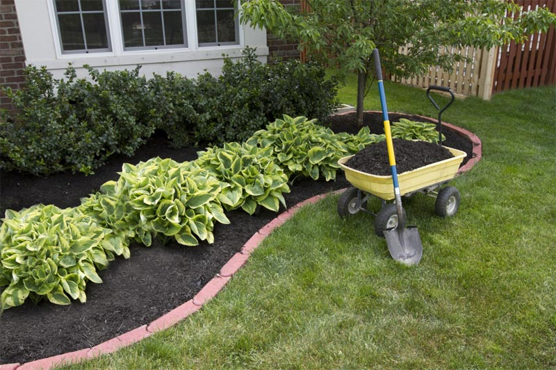 Cheap Front Yard Ideas cheap landscaping ideas for front of house