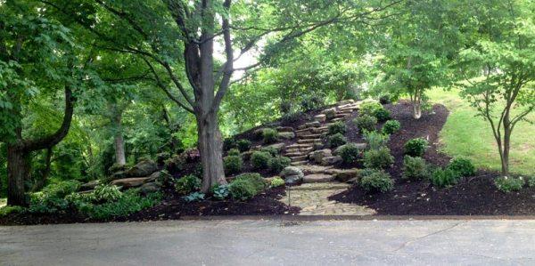 tips choose hillside landscaping