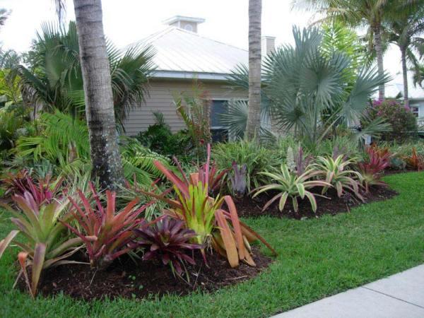maintenance landscaping hints