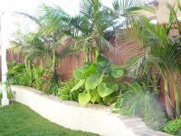 Tropical-Landscape-Design-Ideas-Florida | Landscape Design