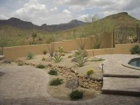 Desert Landscaping: How To Create Fantastic Desert Garden ...
