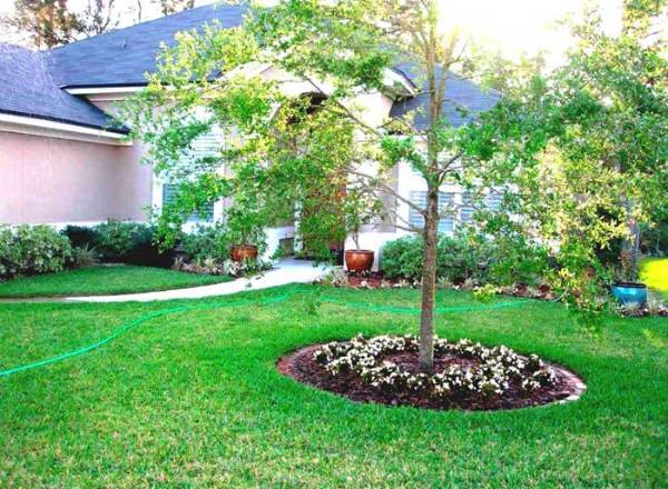 simple landscaping ideas creating