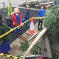 What do you think has happened outside Oak Class?