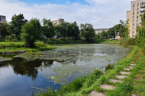 Марцінків перейнявся «здоров'ям» озера на БАМі (ФОТО)