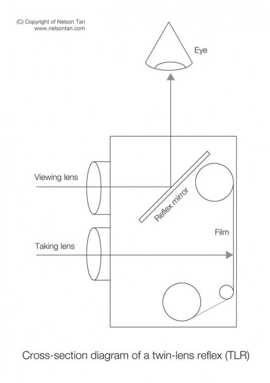 TLR-diagram