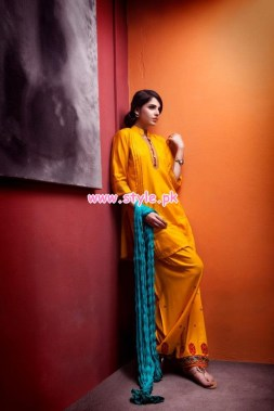 Beech Tree Winter 2012 Collection For Women 009