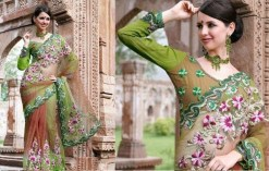 Latest Bridal Saree Trends 2012 For Women 0010