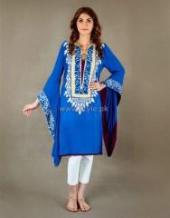 Ayesha F Hashwani Winter Dresses 2013 For Women 9