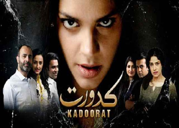Top 10 Pakistani Actresses In Negative Role 005