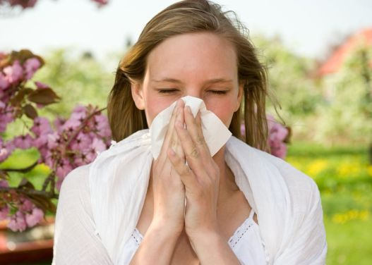 Treat Summer Allergies