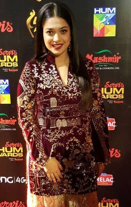 Hair Styles of Celebrities at HUM Awards 2016 (7)