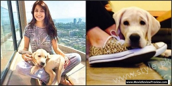 Pictures Of Bollywood Celebrities And Their Pets08