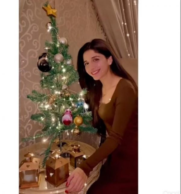 Famous Pakistani Celebrities Christmas Celebration Pictures