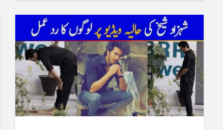 Public Reaction On Shahzad Sheikh Recent Video
