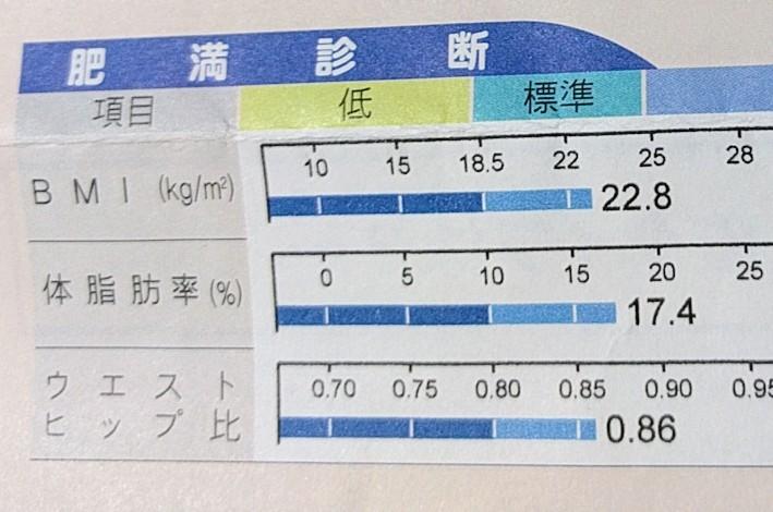 (14日目)体脂肪を減らし筋量をあげる計画 90日間