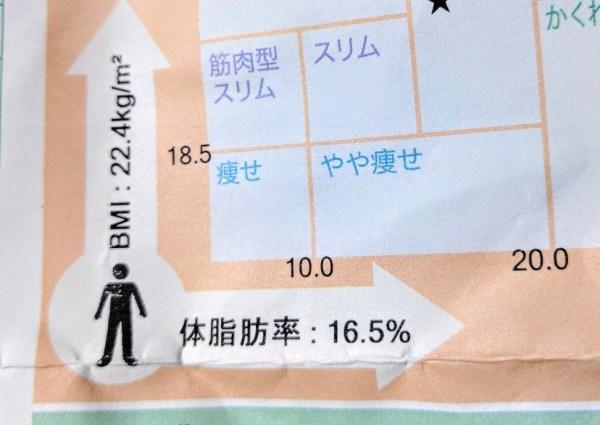 体脂肪率 16%
