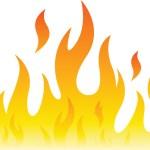 脂肪燃焼系プログラム