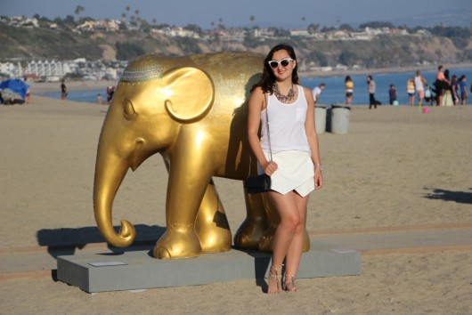 doheny-beach-elephant-parade-5
