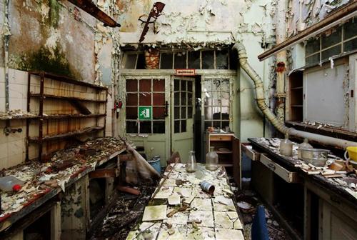 Beat-Hauser-Lab-Decay