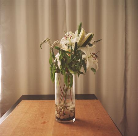 Renee Palone Flynn Lilies in Vase