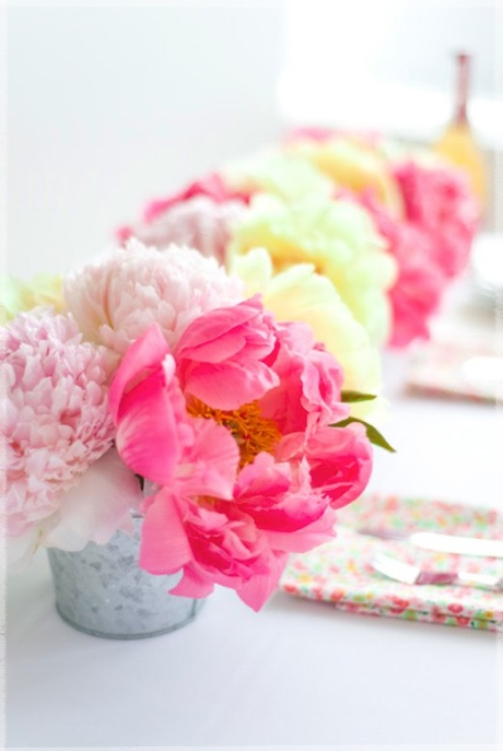 Peonies-Chelsea-Fuss-Lisa-Warninger