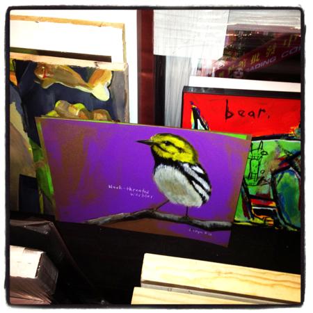 dana-ellyn-warbler-bird