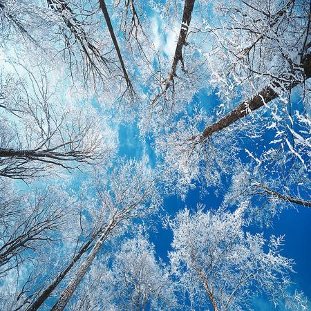 frozen-sky-philippe-sainte-laudy