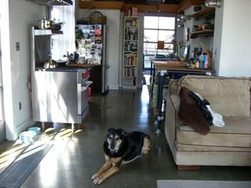 sharon-kitchens-kitchen