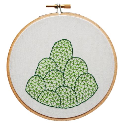 sarah-k-benning-cactus