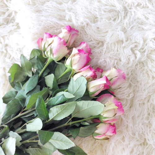 Pink Roses From The Bouqs On Flokati Rug