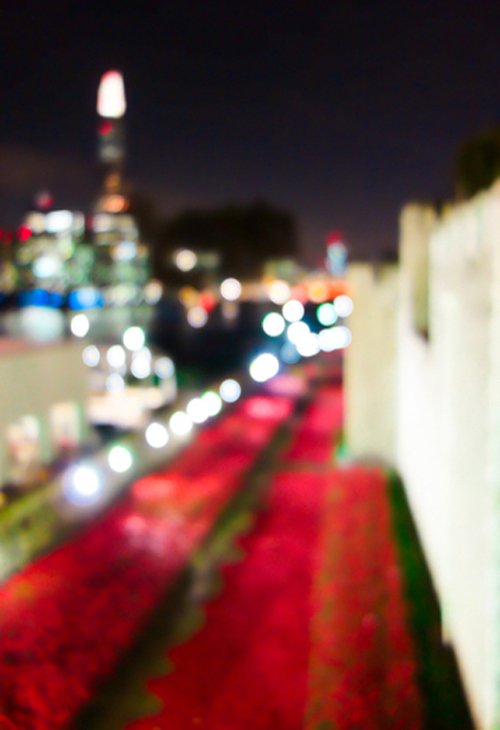 cityscape-tower-poppies