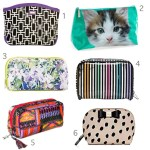 Get the Look: 30 Cute Cosmetic Cases