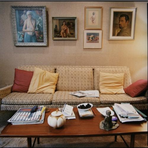 Stefanie Klavens Interior Photograph Gold Living Room