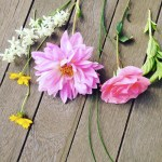 Sunday Bouquet: Morning Garden Cuttings