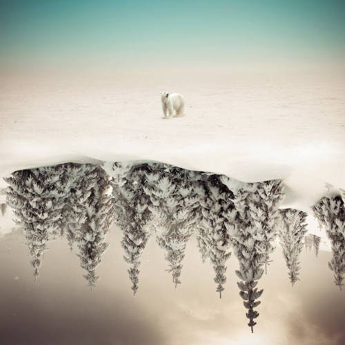 Affordable Artwork Snowy Landscape Photo Abstract