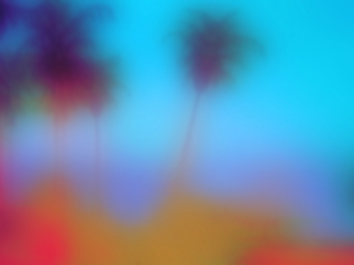 Blurry Photograph Of Palm Trees By Joan Pamboukes At MassArt Auction