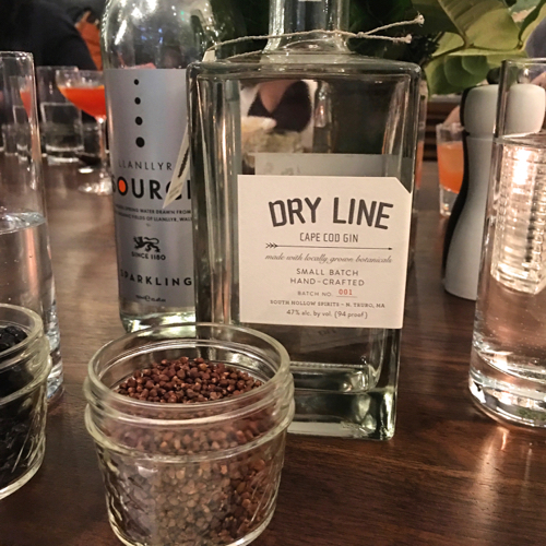 Dry Line Cape Cod Gin Distilled With Peppercorns