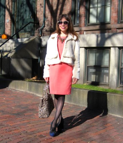 fur_coat_sheath_dress