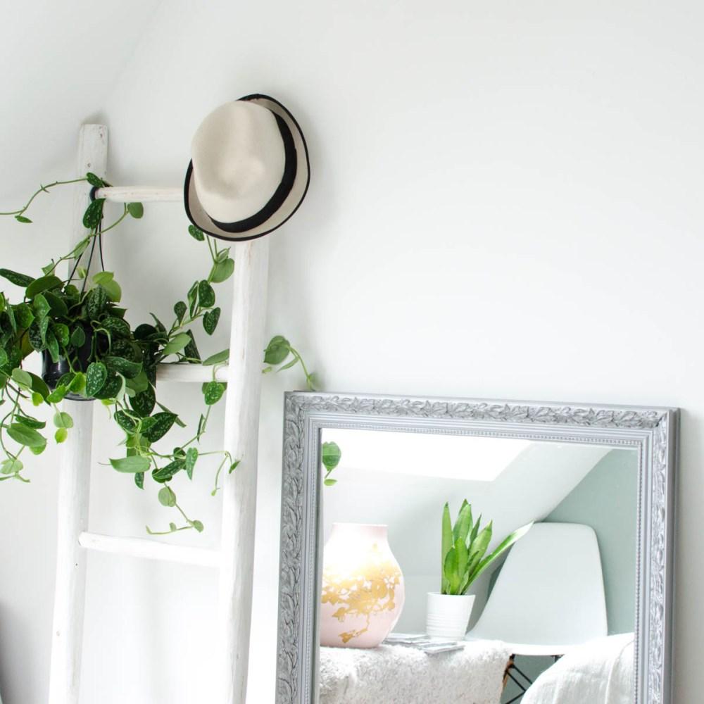 Plant slaapkamer