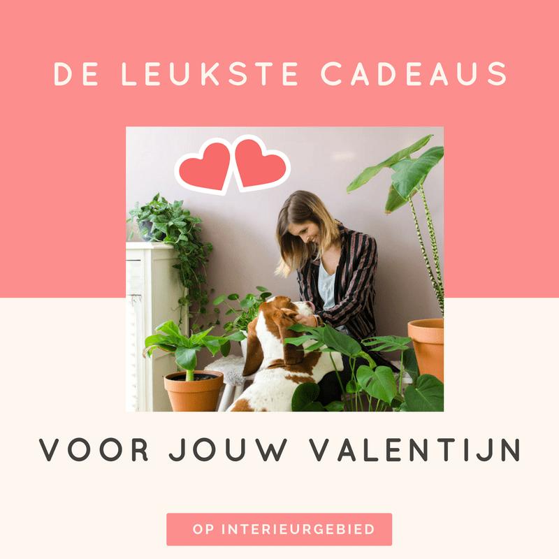 Valentijnsdag cadeau