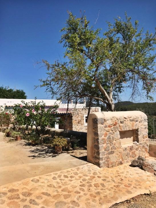 Ibiza glutenvrij