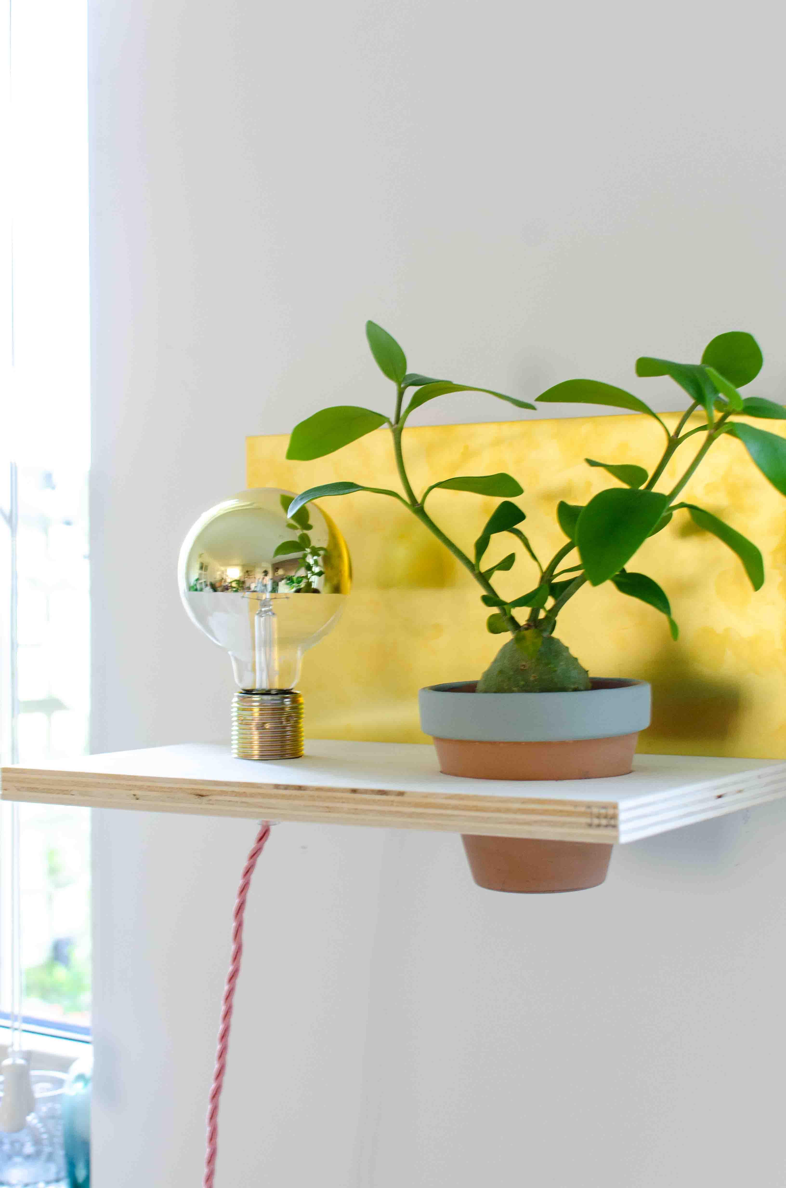 Bosch DIY workshop