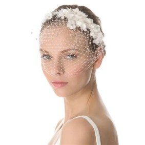 50 Blusher Veils and Bridcage for Brides Ideas 45